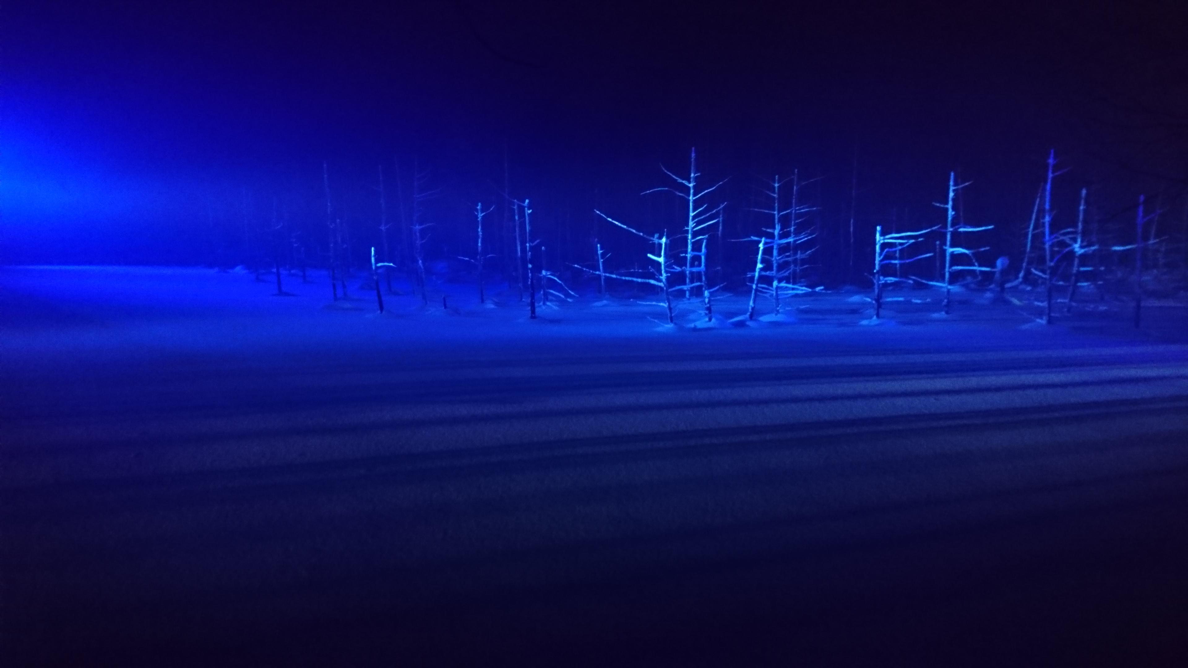 ライトアップした青い池1