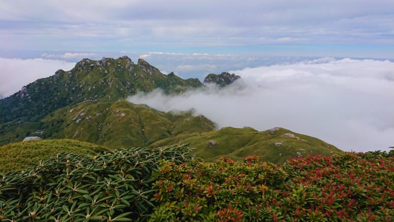 鹿児島屋久島の宮之浦岳からの景色