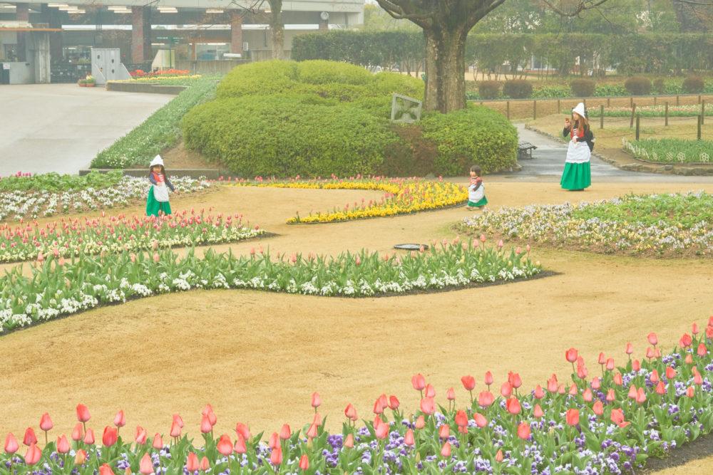 兵庫県立フラワーセンターでオランダの民族衣装を着る家族