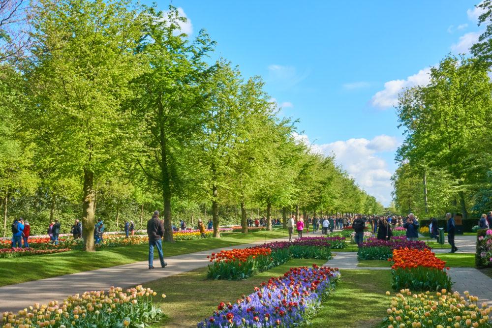 オランダにあるキューケンホフ公園の園路