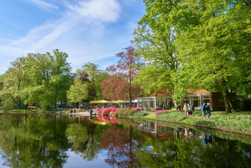 オランダにあるキューケンホフ公園の川沿いの風景