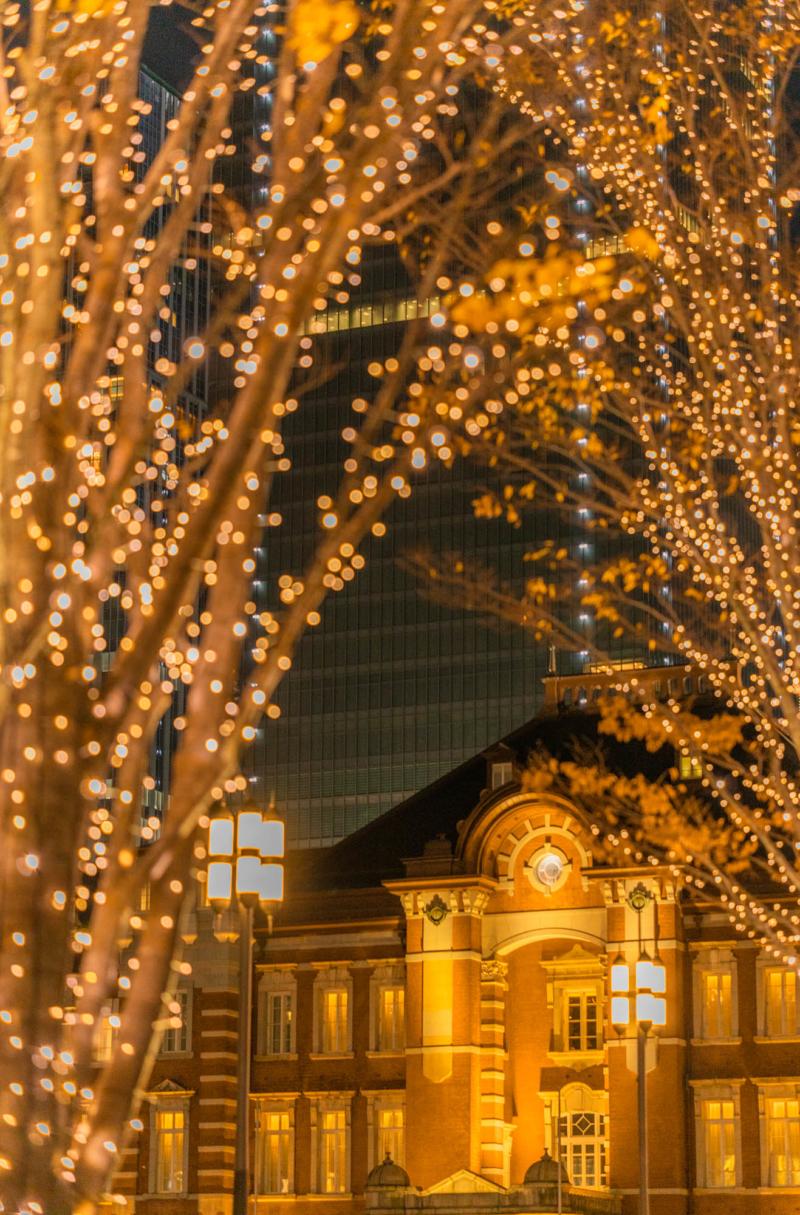 東京駅とケヤキのイルミネーション