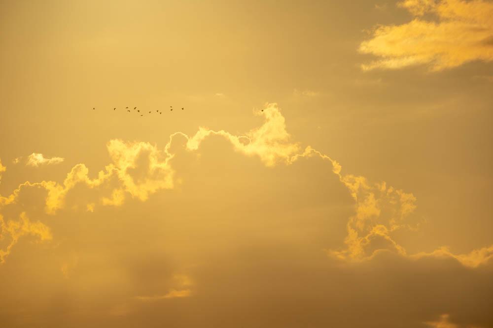 α7ⅲとSIGMA 100-400で撮影した夕方の雲
