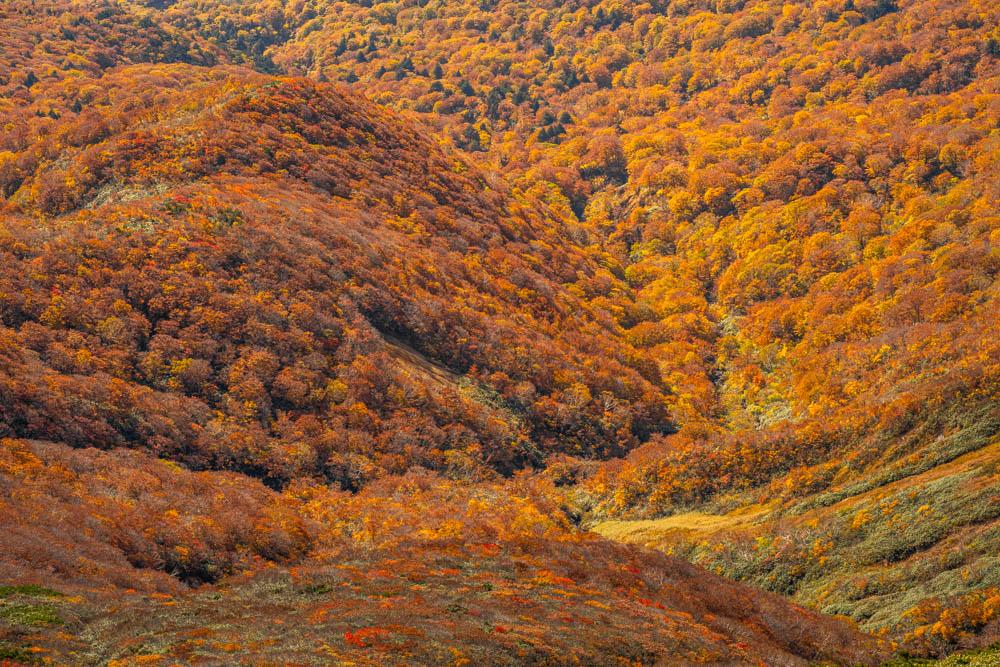 栗駒山 山頂から景色を切り取る