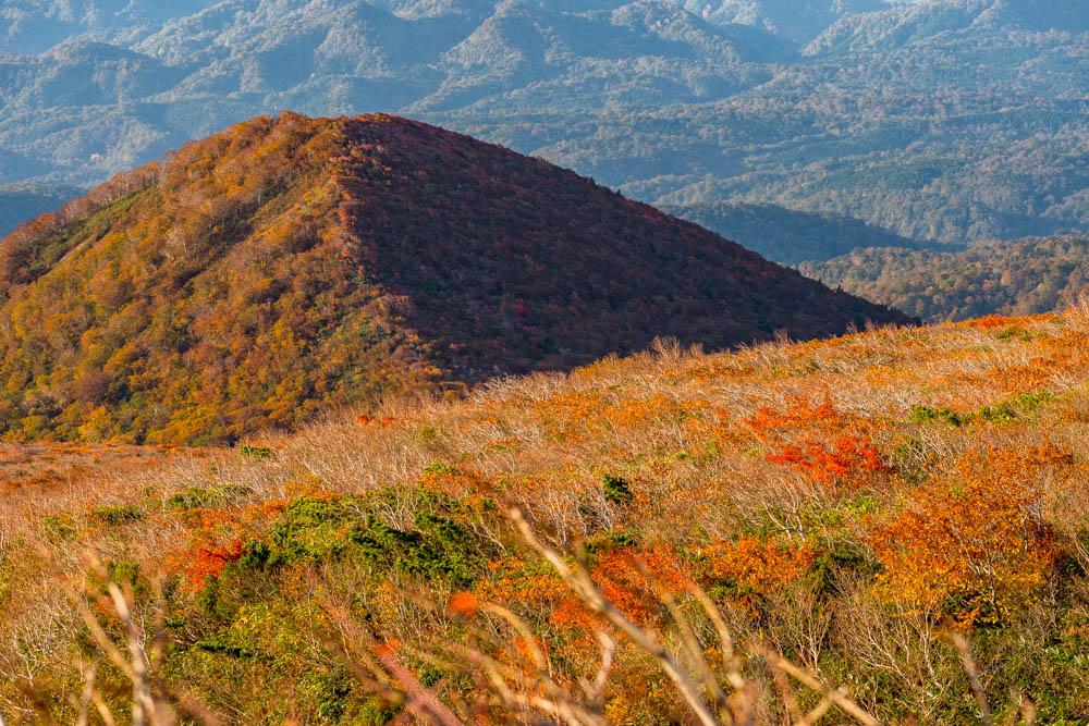 栗駒山 秋色の景色
