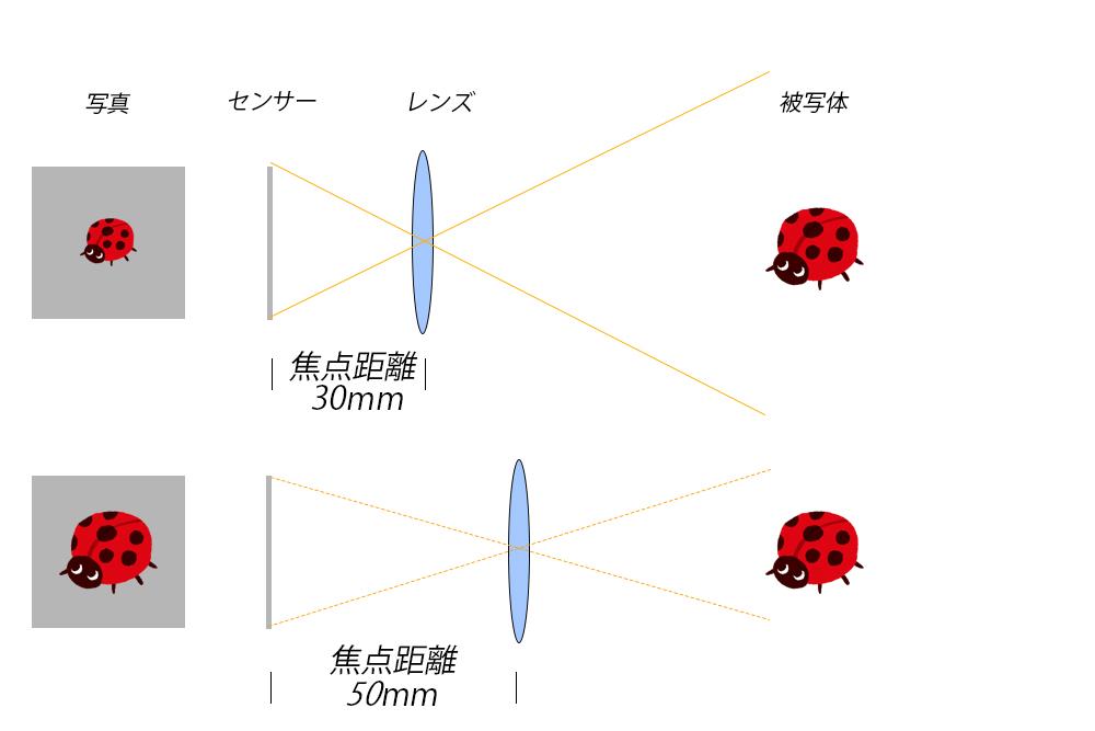 焦点距離と画角のイメージ