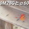 SEL90M28Gはα6000シリーズで使えるの?