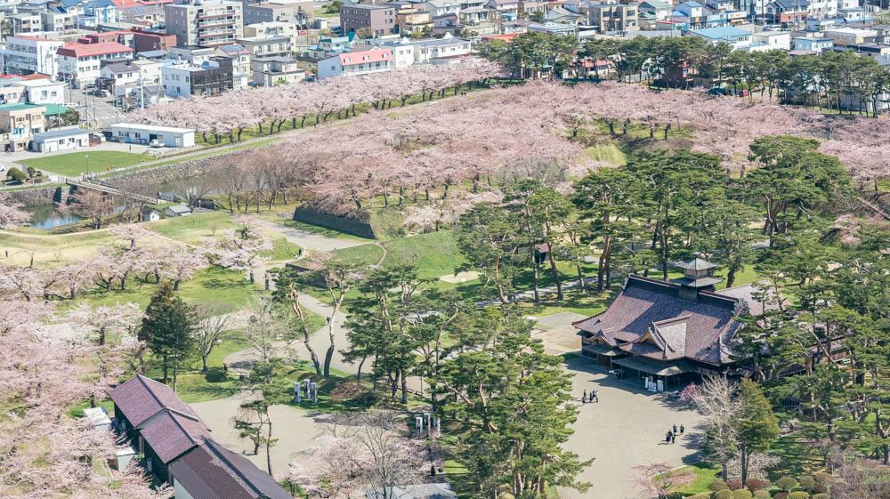 五稜郭の桜 撮影方法