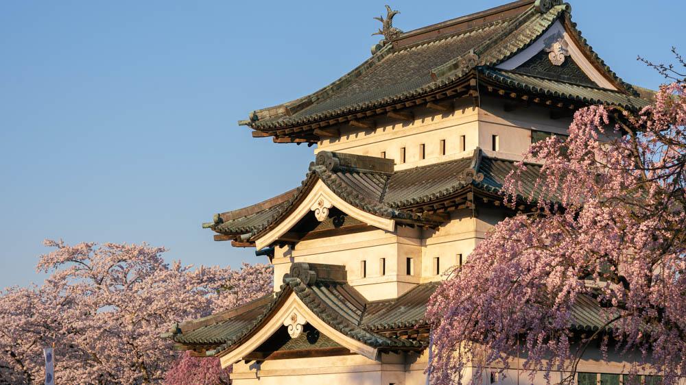 弘前城公園桜祭りの概要