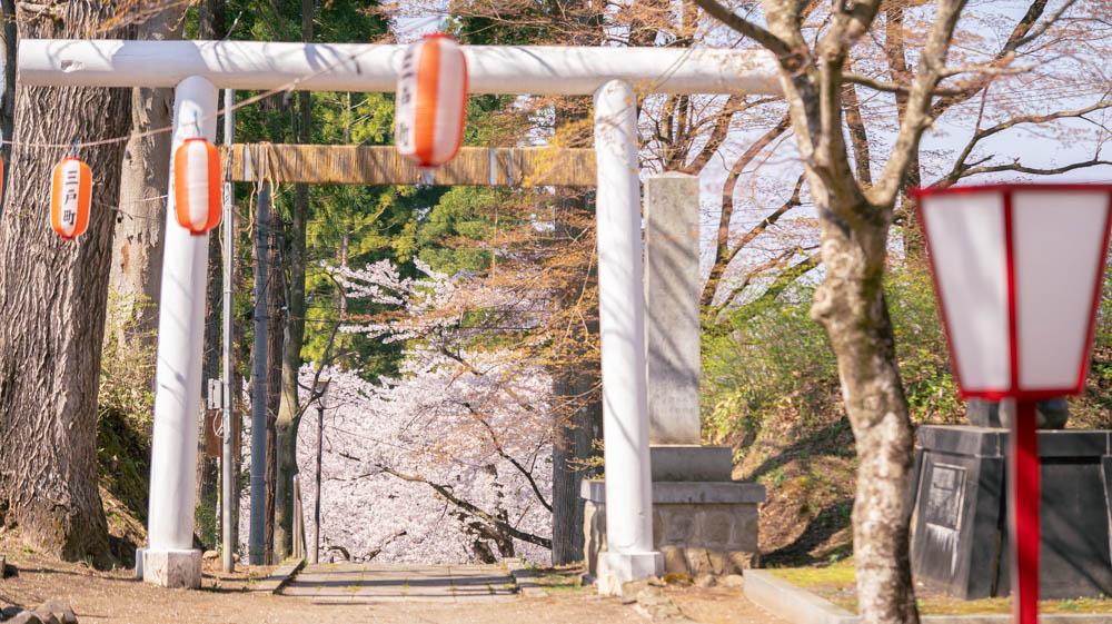 三戸城公園での撮影ポイント