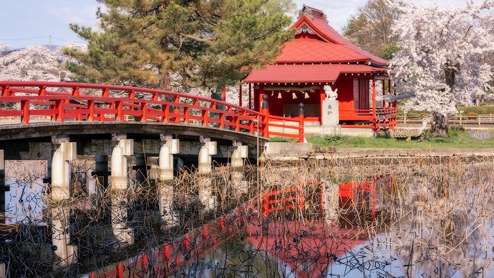 猿賀公園と蓮と猿賀神社