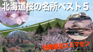 北海道桜の名所ベスト5【写真家が勝手にランキング】