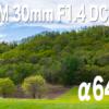 SIGMA 30mm F1.4 DC DNとα6400