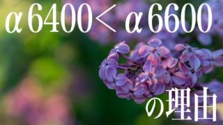 α6400よりα6600がオススメの理由