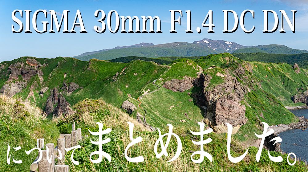 SIGMA 30mm F1.4 DC DN まとめ